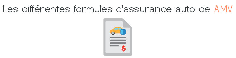 formules assurance auto amv